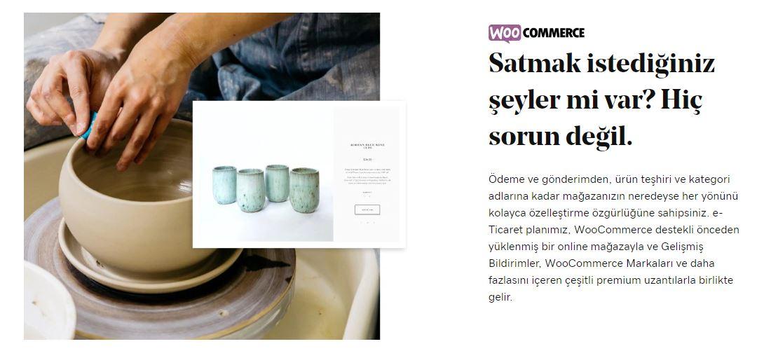 wordpress e-ticaret godaddy hosting sayfası woocommerce