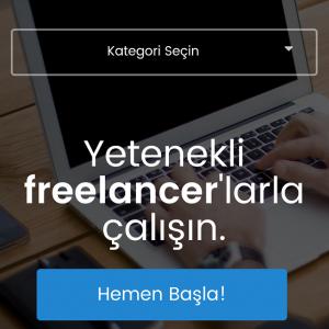 web sitesi tasarimi bionluk mobil sitesi