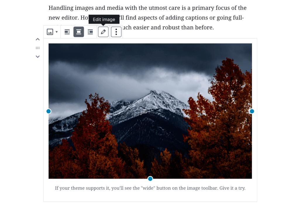 Gutenberg görsel bloğu seçenekleri