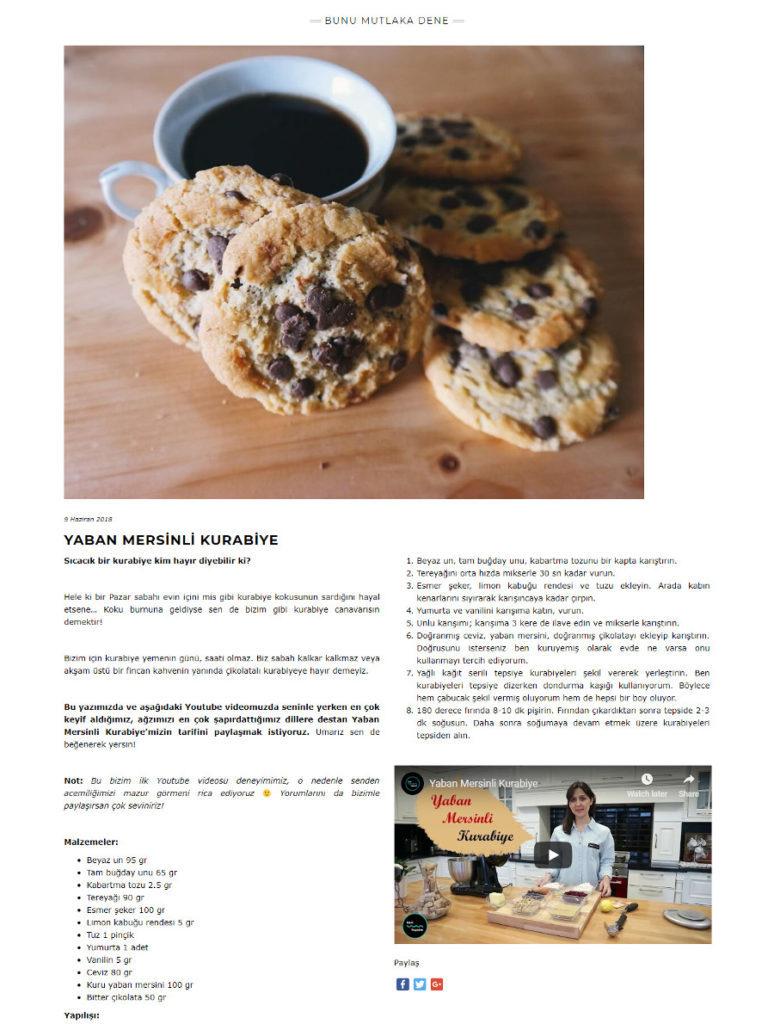 seo uzmanı bilge aydoğan hadiyapalim.co web sitesi blog yazı yaban mersinli kurabiye yemek tarifi