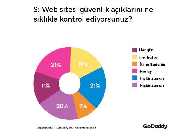web sitesi güvenlik kontrolü grafik