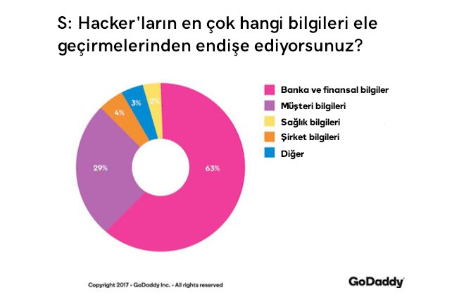 web sitesi güvenlik ele geçmesinden endişe edilen bilgiler grafik
