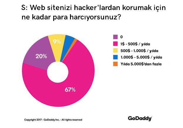 web sitesi güvenlik web sitesi koruması harcamaları grafik