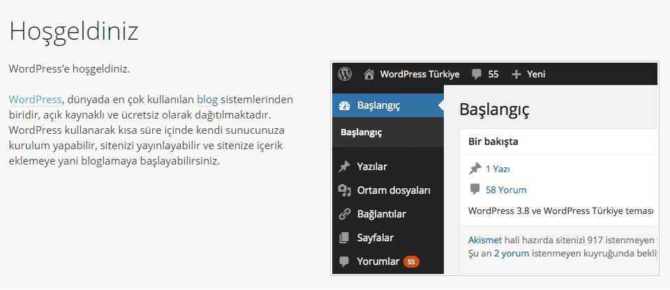 Web sitesi kurulumu WordPress