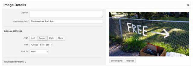web sitesi nasıl kurulur yönetilebilir wordpress görsel