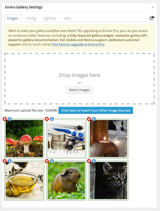 WordPress galeri eklentisi Envira Gallery Lite örnek