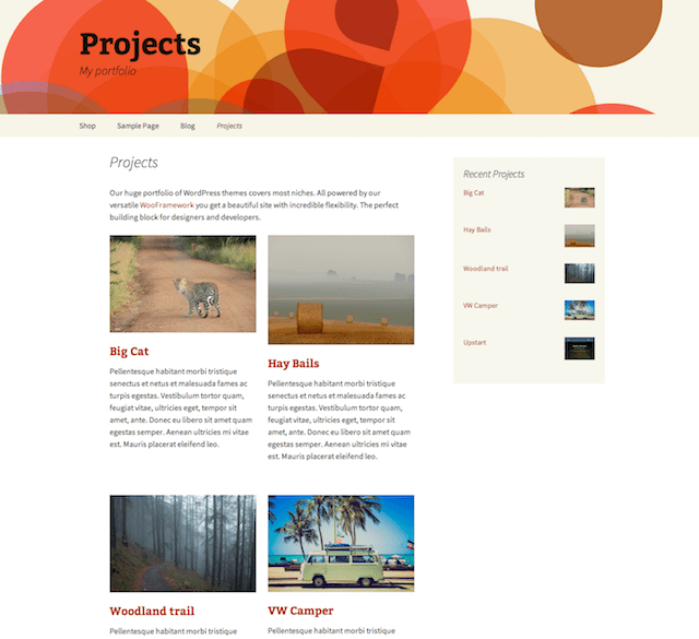 WordPress portföy eklentisi Projects by WooThemes